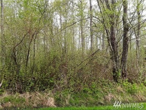 1638314 Bellingham Building Lot