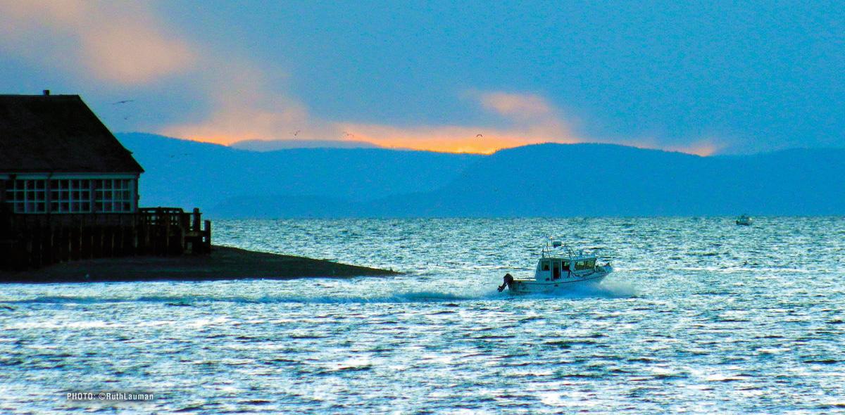 Semiahmoo Bay Boating - Blaine WA