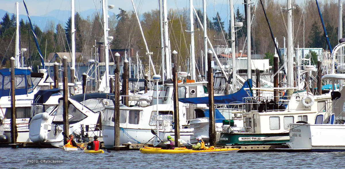 Semiahmoo Marina Kayakers